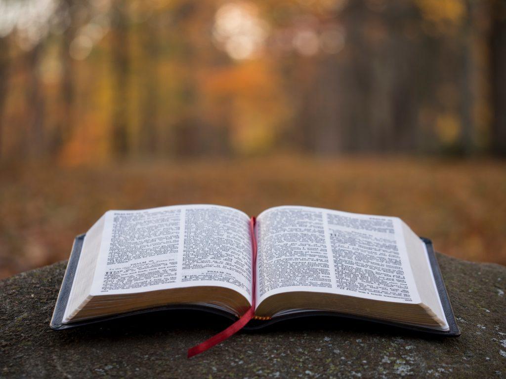 यहोवा मेरा चरवाहा है